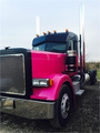 2007 Peterbilt 379 Caterpillar  C-15