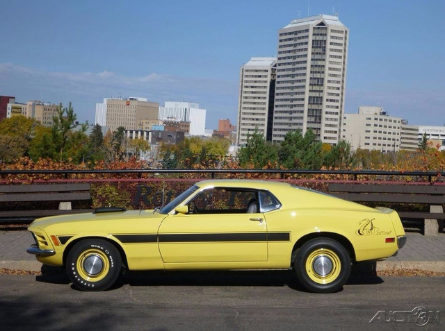 The 1970 Ford Mustang Sidewinder photos