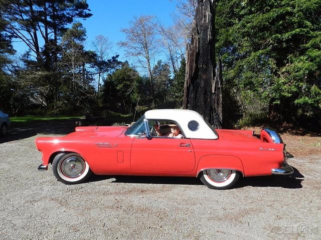 1956 Ford Thunderbird  photo