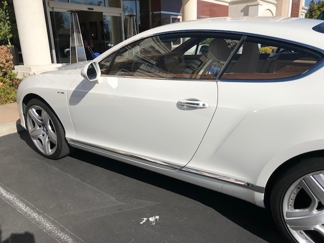 2014 Bentley Integra photo