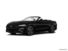 2019 Ford Mustang ECO CONV